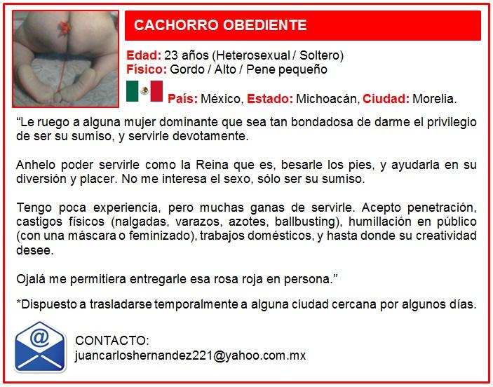 SUMISO CACHORRO OBEDIENTE FEMDOM
